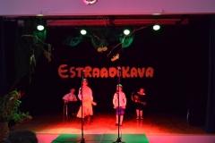 Estraadikava 2013